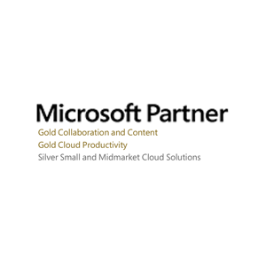 microsoft-partner-2